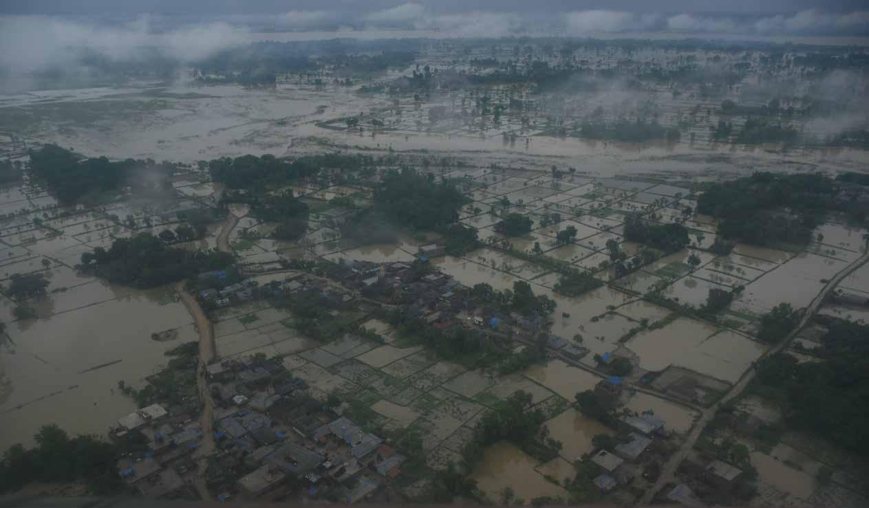 बाढीले प्रदेश २ मा साढे ३ अर्बभन्दा बढीको बाली तथा पशुपन्छी नष्ट