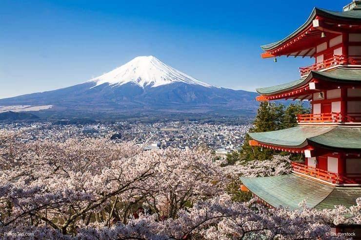 जापानी भाषा परीक्षाको मिति सार्वजनिक