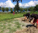 फेवा किनारमा बीच भलिबल मैदान निर्माण सुरु