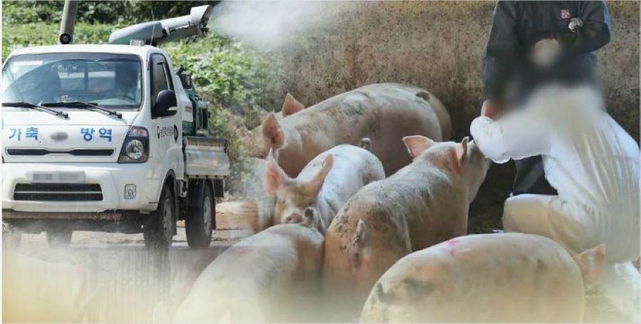 दक्षिण कोरियामा मासु आयातमा प्रतिबन्ध