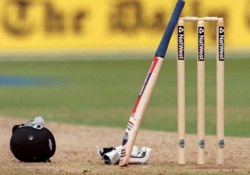 क्रिकेट 'क्रेज' बढाउँदै पीपीएल