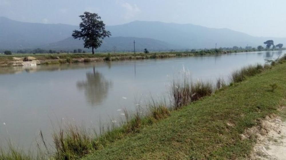भारतीयले पानी नछाड्दा गहुँ प्रभावित