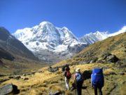 हिमपहिरोमा ४ कोरियन र ३ नेपाली अझै बेपत्ता