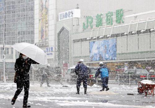 टोकियोमा बेमौसमी हिमपात
