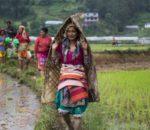 कृषि कर्ममा रमाउँदै म्याग्देली