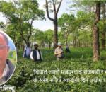 नेपालमा चियाको इतिहास, बिकास र कोरोना प्रभाव