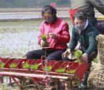 कोरोना महामारी- उत्तर कोरिया सहित ४७ देशमा खाद्यान्न संकट