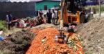 सागसब्जी नष्ट गर्न नदिनु, उत्पादन बजारसम्म पु-याउने व्यवस्था मिलाउनु