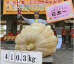 जापानमा फल्यो ४ सय १० किलोको फर्सी